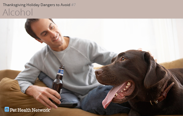 Man drinking a beer with his dog