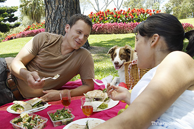 Couple having a picnic with their dog