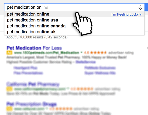 Online search for pet medication