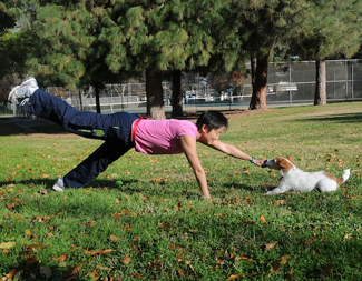 Dr. Sophia Yin working out with her dog