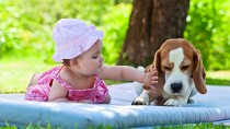 """Dog and Baby Compete to Say """"Mama"""" First, A Veterinarian Weighs In"""
