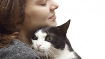 Cancer and Cats: What Every Pet Parent Should Know