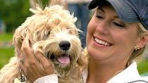 Dialated Cardiomyopathy in Dogs