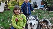 Coccidiosis in Dogs
