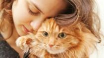woman-hugs-thin-cat