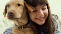 What You Need To Know About Heartworm Disease