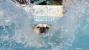 Splash! 5 great ways to keep your dog safe around water.
