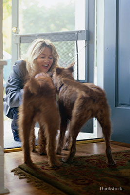 Woman greeting her dogs at the door